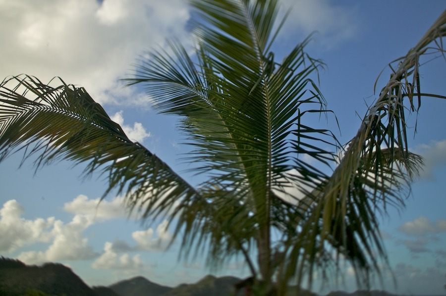 f1av3621 St. Barts - French West Indies