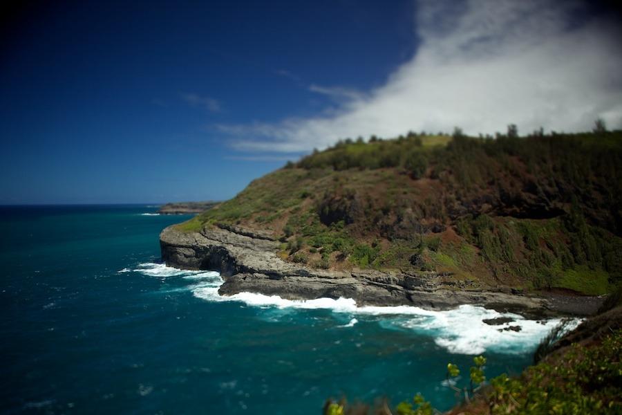 Kilauea-lighthouse-kauai-2 Kilauea Point Lighthouse, Kaua'i hawaii