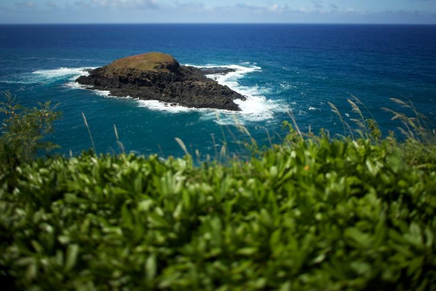 Kilauea-lighthouse-kauai-5 Kilauea Point Lighthouse, Kaua'i hawaii