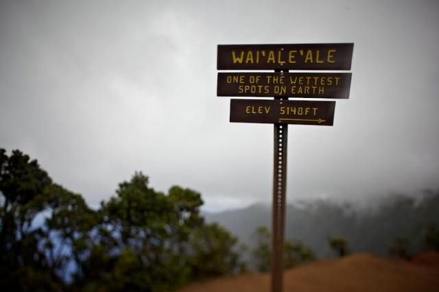 Wai'ale'ale, Kauai Hawaii